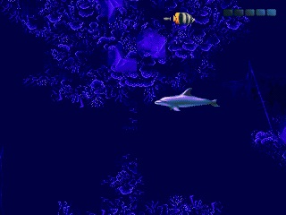 ECCO. The Tides of Time